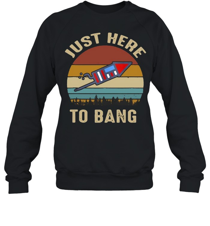 I'm Just Here To Bang 4Th Of July Vintage T-shirt Unisex Sweatshirt
